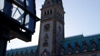 Blick auf das Rathaus von der Alster aus